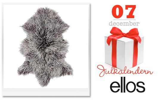 7 december Dagens lucka i Julkalendern Trendenser