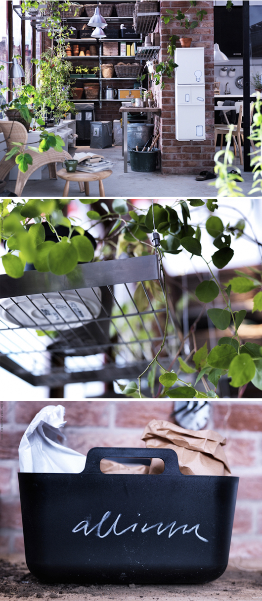 växter och Vårväxter livet hemma IKEA