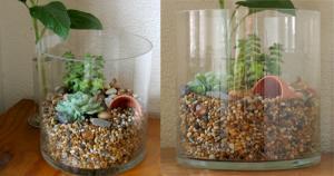 akvarium utan fisk 2